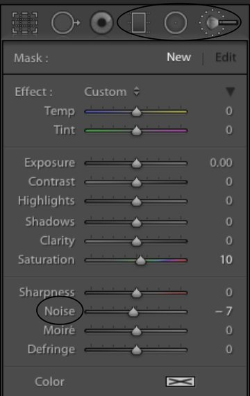 A panel showing the various settings for the Gradient Radial and Adjustment brushes