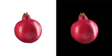 A pomegranate on white and black backgrounds