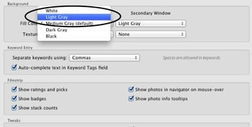 Gray color options in Lightrooms Interface menu