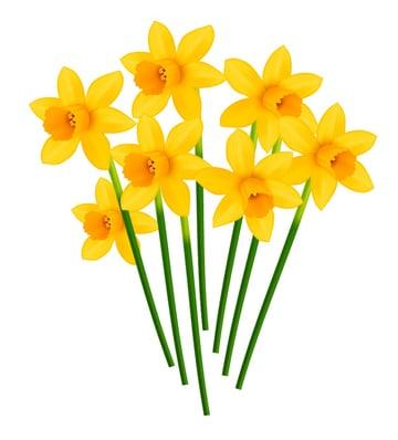 seven flowers in a bouquet