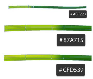 color the left side of the stalk a lighter green