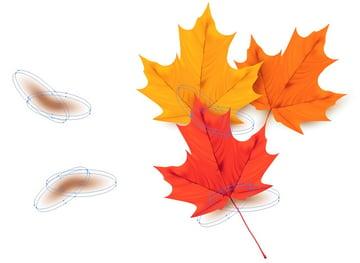add final leaf