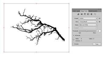 trace branch