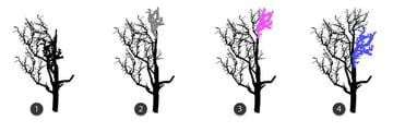 add branches