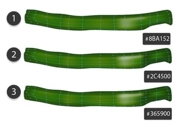 draw cucumber