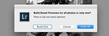 Build all Smart Previews