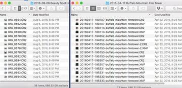 Renamed Image Files