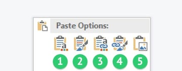Excel paste options visual