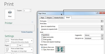 Print with Gridlines Microsoft Excel