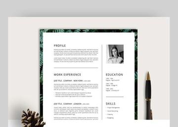 Ferns Resume CV simple resume template