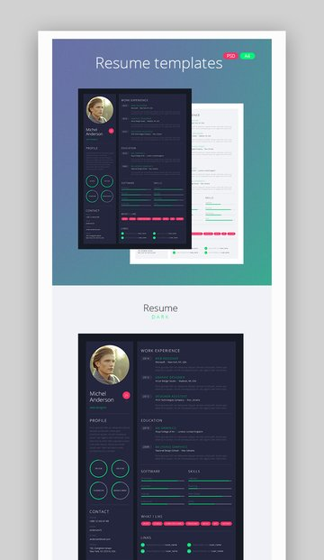 Web Design Style Resume and CV