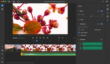 Adjust Audio in Adobe Rush