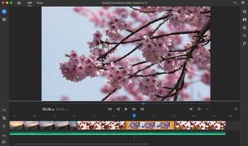 Adobe Rush Interface