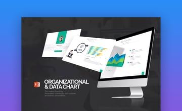 Organization  Data Chart