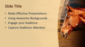 Horse animal themes download