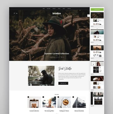Brodus - Personal Blog WordPress Theme