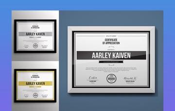Simple Multipurpose Certificates