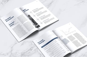 LEVIDE Corporate Annual Report