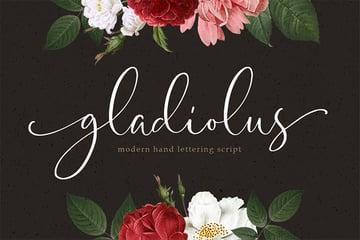 Elegant Fonts