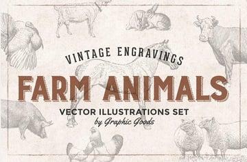 Vintage Animal Illustrations - Engraving