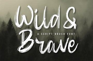 Brush Style Font