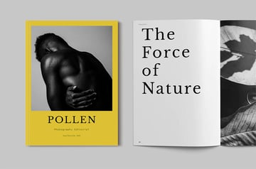 Pollen Booklet Design Template