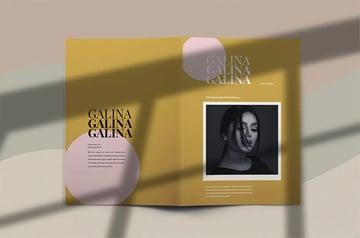 Galina - Brochure Template Indesign