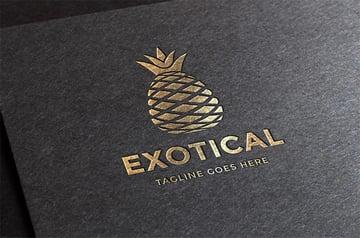 Exotic Logo Ideas