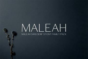 Maleah Narrow Font Sans Serif