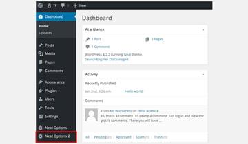 Neat Options 2 in the WordPress dashboard