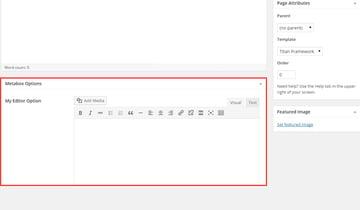 The Editor Type in a Meta Box