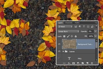 Leaves Texture Overlay