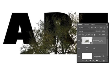 Add the Branches Image
