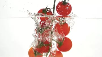 Whole Tomatoes Falling Through Water