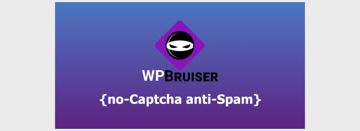 WPBruiserPro