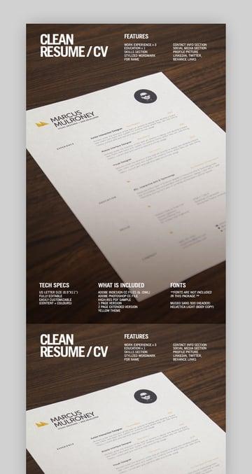Clean Resume
