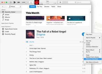 remove-offline-music-from-apple-music
