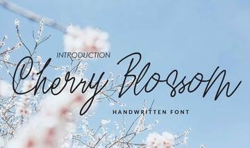 Cherry Blossom font face