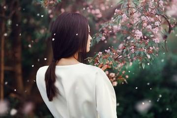 How to Create sakura petals brush photoshop