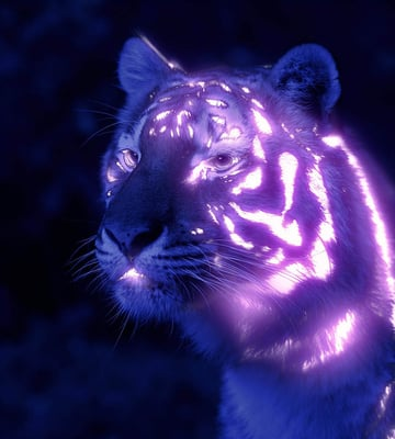 fill in dark stripes with neon glow effect
