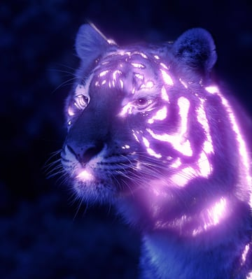 how to create a glow effect in Photoshop