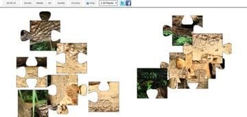 Canvas Puzzle