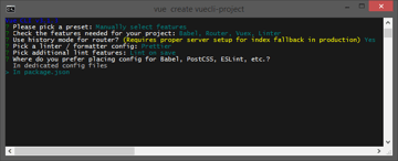 Create a project with Vue CLI Dedicated config file or config in packagejson