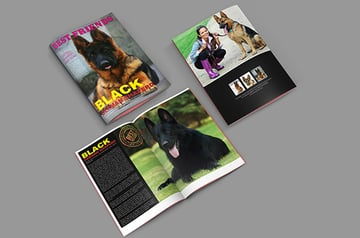 Free Pets Brochure InDesign Template