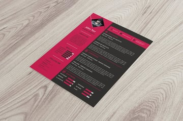 Professional Resume Template