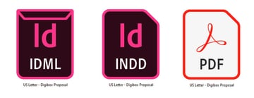 InDesign File Types
