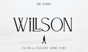 Willson Clean Modern Fonts Serif