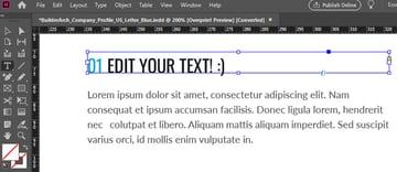 InDesign Edit Text