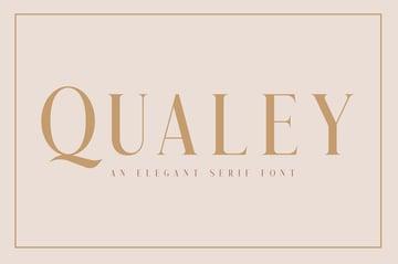 Qualey Elegant Serif Fonts Similar to Didot