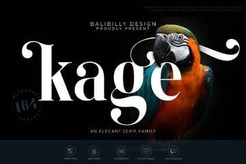 Kage An Elegant Serif Typeface Flourish Didot Typeface